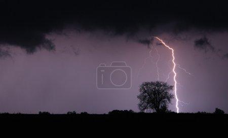 Foto de Tormenta y el rayo - Imagen libre de derechos