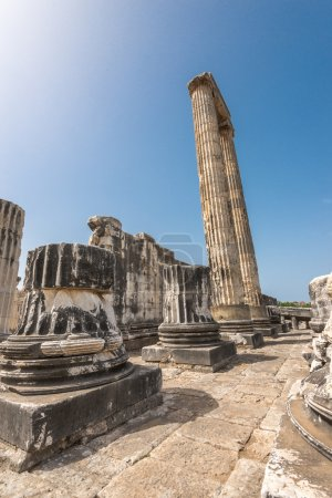 Ruins of  giant columns of ancient Apollo temple i...