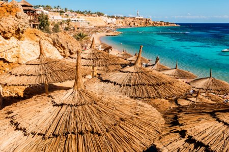 Umbrellas on beach in coral reef, Sharm El Sheikh