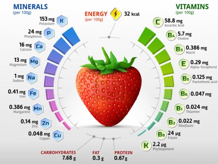 Vitamins and minerals of garden strawberry