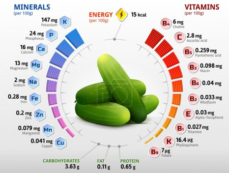 Vitamins and minerals of cucumber fruit