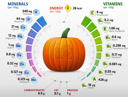Vitamins and minerals of pumpkin