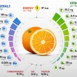 Infographics about nutrients in orange. Qualitativ...