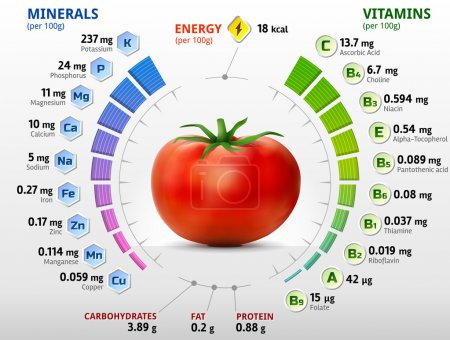 Infographics about nutrients in tomato. Qualitativ...