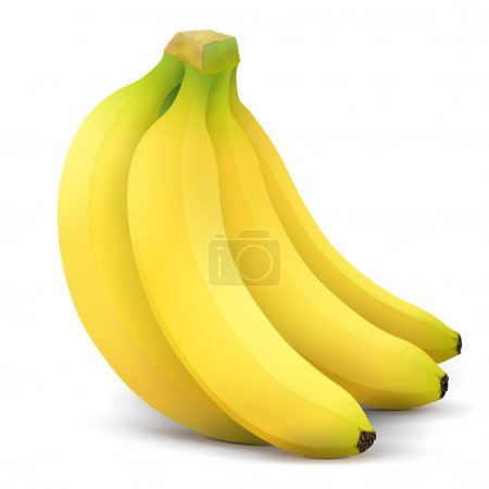 Illustration for Bunch of bananas isolated on white background. Qualitative vector illustration about banana, agriculture, fruits, cooking, gastronomy, etc. It has transparency, masks, blending modes, gradient - Royalty Free Image