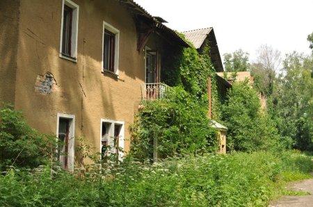 Overgrown house overgrown loach