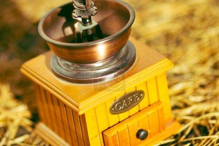 Photo pour Vieux moulin à café manuel vintage en bois sur le chemin en aiguilles de pin - image libre de droit