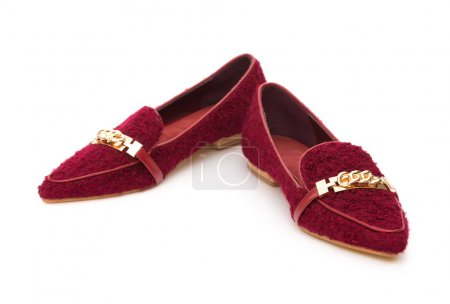 Pair of trendy shoes for lady on a white background