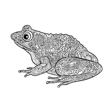 Frog isolated.  doodle frog