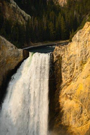 Photo pour Vue rapprochée des chutes inférieures de la rivière Yellowstone alors qu'elle plonge dans le canyon de Yellowstone, vue de Lookout Point sur le rebord nord - image libre de droit