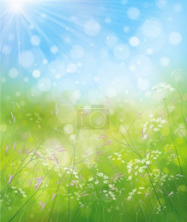 Photo pour Fond de nature printemps avec des fleurs sur le champ et le soleil. Illustration - image libre de droit
