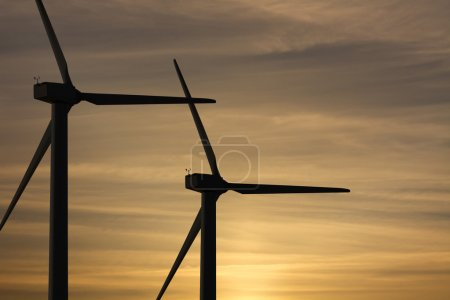 Wind mills park for ecologic and renewable electri...