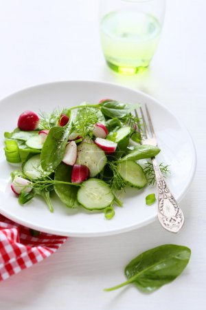 Photo for Fresh salad with radish and cucumbers, food closeup - Royalty Free Image