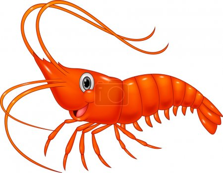Illustration for Adorable, animal, aquatic, cartoon, character, comic, cooking, crazy, crustacean, cute, diet, dinner, eating, food, fresh, fun, funny, gourmet, happy, healthy, illustration, life, marine, mascot, natural, nature, nutrition, ocean, prawn, prepared - Royalty Free Image