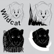 Постер, плакат: stylish vector logo black panther