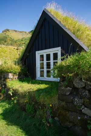 Traditional Icelandic houses with grass