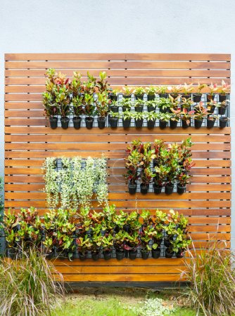 Photo for Beautiful vertical garden in city around office building - Royalty Free Image