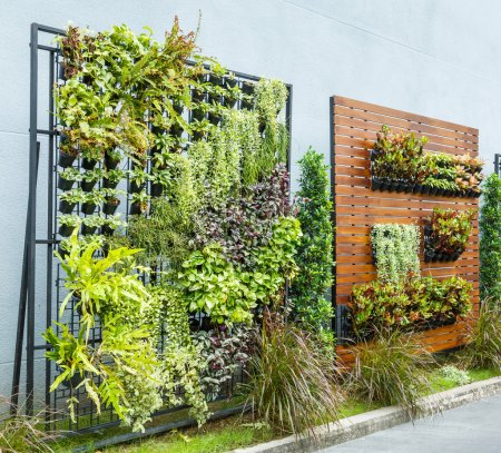Beautiful vertical garden in city around office bu...