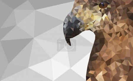 Low-Poly Eagle