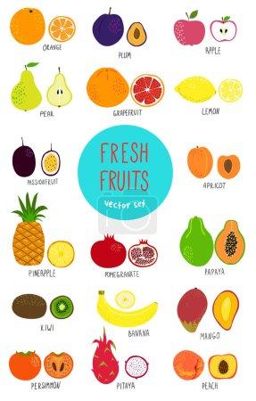 Fruits set - illustration.
