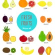 Collection of colorful fruits. Vector illustration...