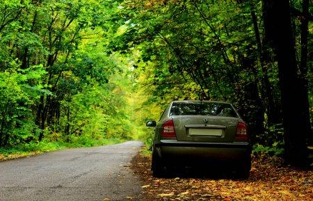 Skoda Octavia on the road