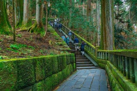Stone steps to the tomb of Tokugawa Ieyasu in Tosho-gu shrine