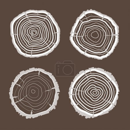 Vector tree rings set. Flat Design