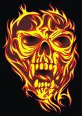 Nice human skull on the black background
