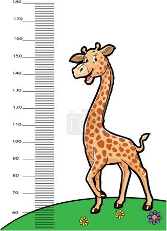 giraffe animals as ruller