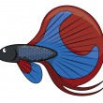 Betta fish cartoon illustration...