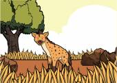 Hyena Drahomíra safari ilustrace