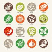 Colorful icon set - cooking ingredients: spices condiments and herbs