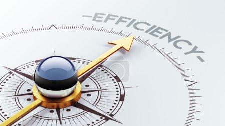 Estonia Efficiency Concept