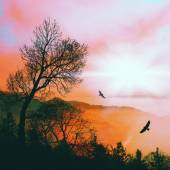 Colorful natural landscape with birds