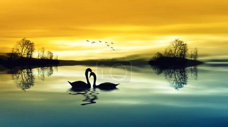 Photo pour Beau paysage avec des oiseaux - image libre de droit