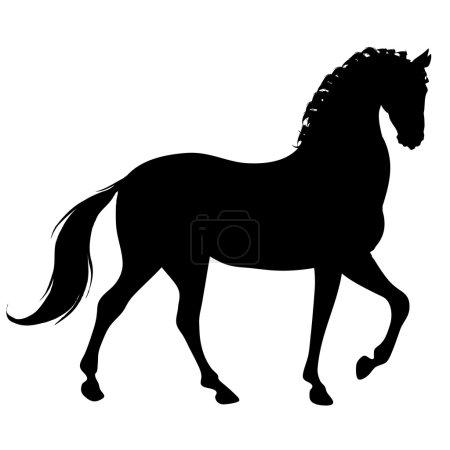 Photo pour Silhouette d'un beau cheval noir - image libre de droit