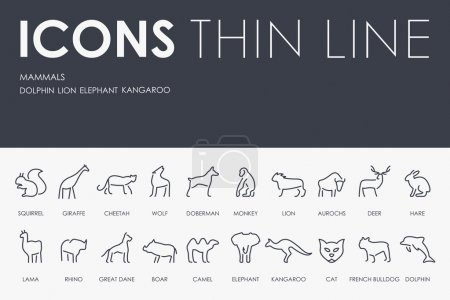 Mammals Thin Line Icons