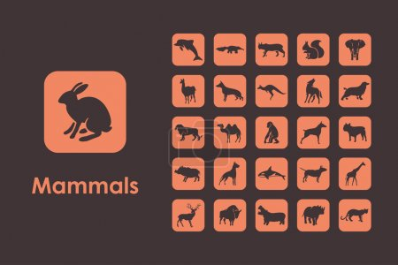 Illustration for It is a set of mammals simple web icons - Royalty Free Image