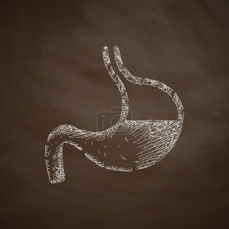 Stomach icon on chalkboard