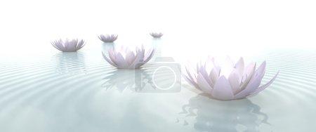 Photo pour Fleurs de lotus zen dans l'eau avec des ondulations sur fond flou - image libre de droit