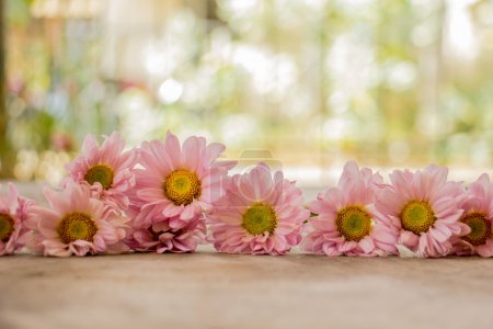 Pale pink flowers on a wooden table