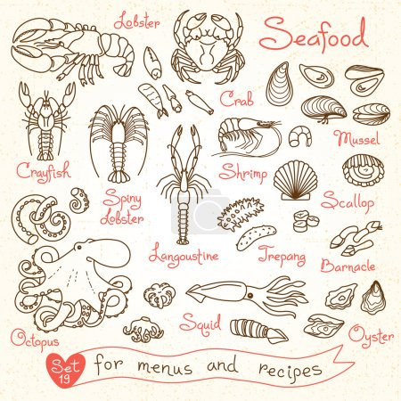 Set drawings of seafood for design menus, recipes,...