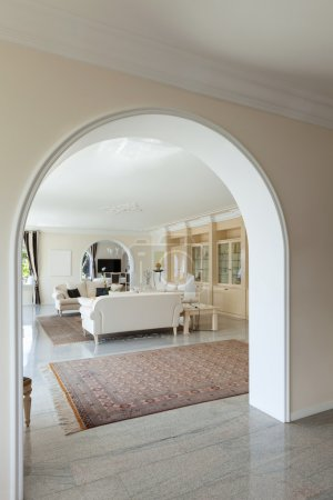 living room in luxury house
