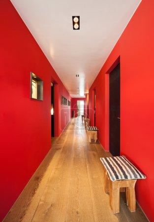 Interior, corridor of a modern house