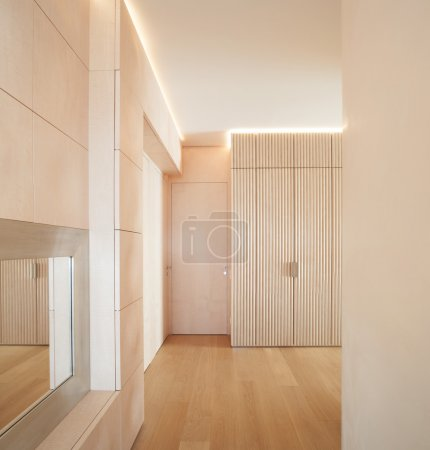 minimal wooden floor interior with doors