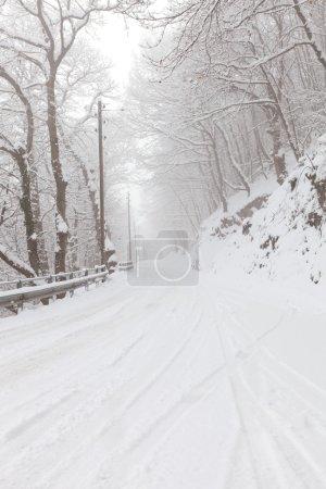 Winter in switzerland