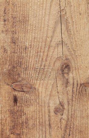 Wood texture, close up
