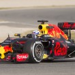 Постер, плакат: Driver Daniel Ricciardo Team Red Bull Racing