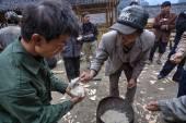 Čínští farmáři vařené rýže do dlaně